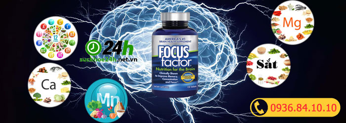 Thành phần Focus Factor Nutrition For The Brain
